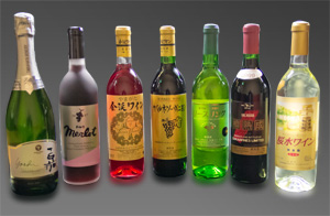 地元ワインも取り揃えております