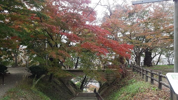 koyo_141024_1